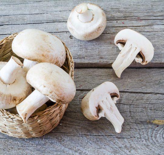 champignonsblancs