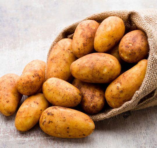 patatesrusset