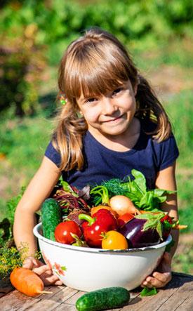 legumes-bio-montreal