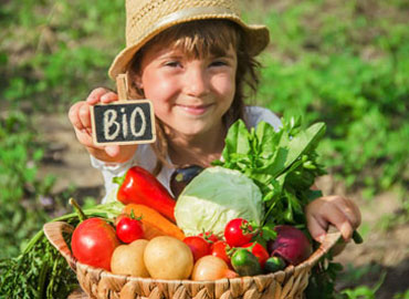 Panier Fruits & Légumes biologiques