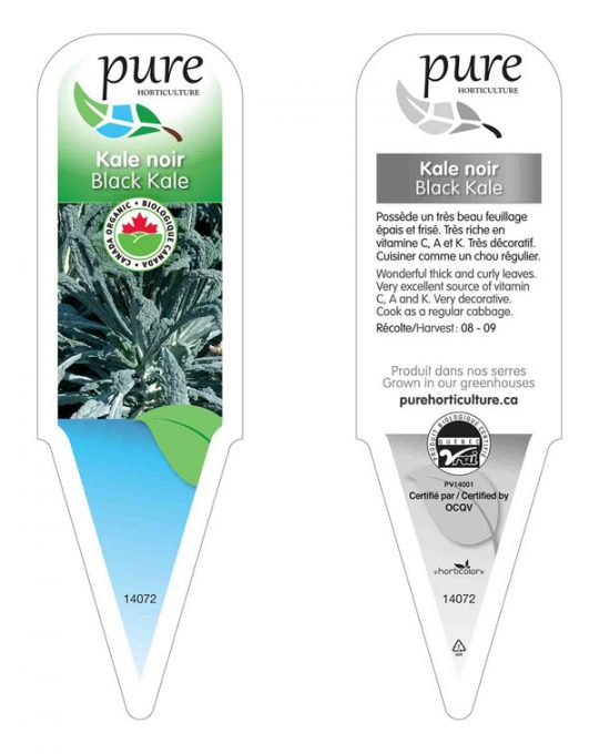 plant-kale-noir