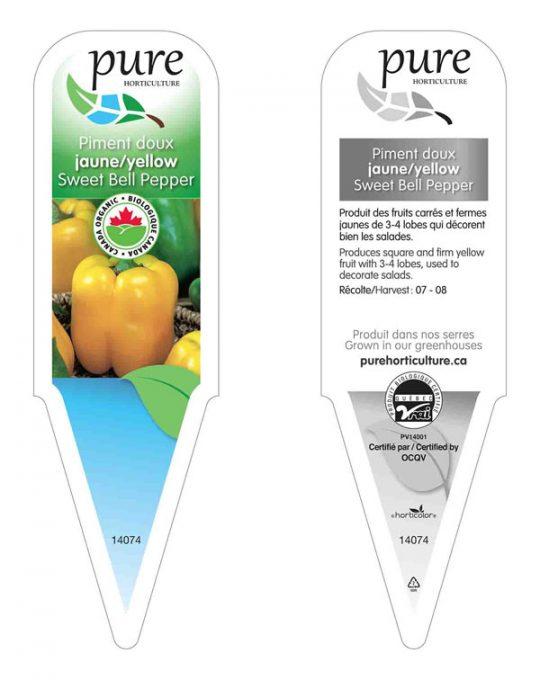 plant-piment-jaune