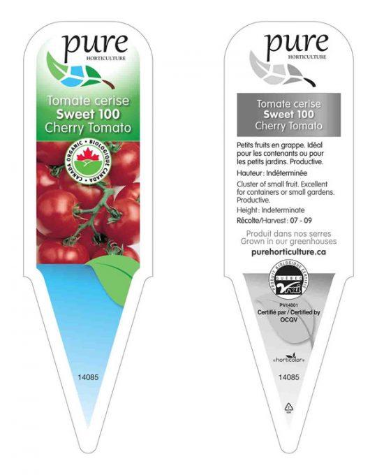 plant-tomate-cerise