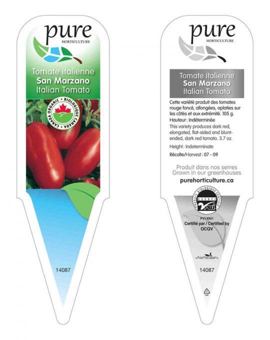 plant-tomates-italiennes