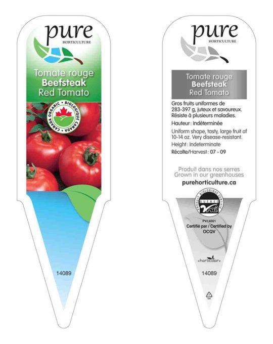 plant-tomates-rouges