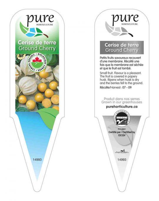 plants-cerise-de-terre
